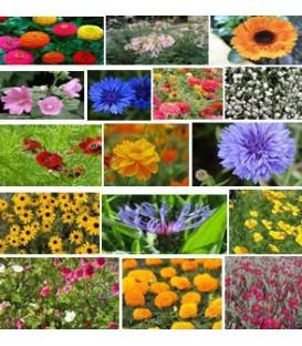 Jachere Fleurie Parcs Et Jardins Chateaux
