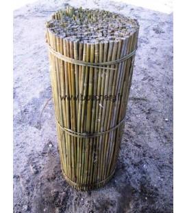 Tuteur bambou grandes tailles