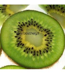Kiwi mâle
