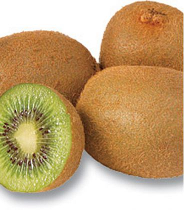 Actinidia - Kiwi Femelle