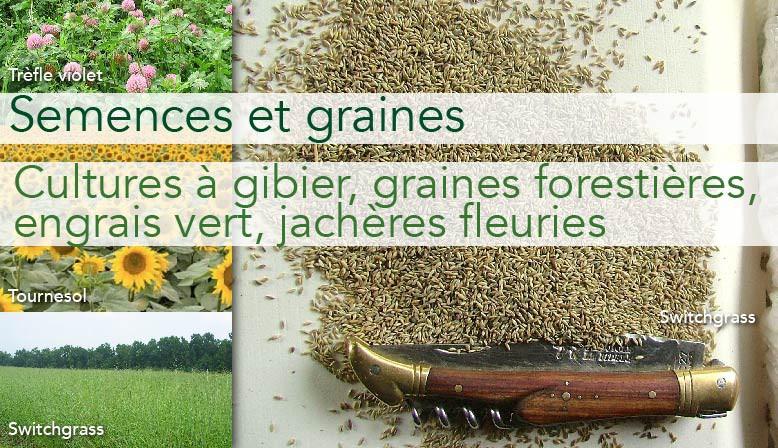 Semences et graines